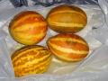 Дыни-ананас