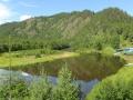 Река Половинная