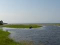 Река Максимиха