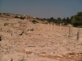 Развалины Аматуса
