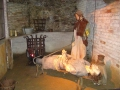 В музее пыток