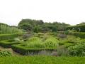 Сад с лабиринтом