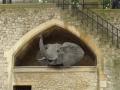 Слон из проволоки