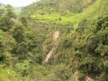 Банджи-джампинг в Кодари
