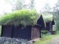 Домики с дерновой крышей