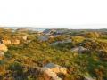 Остров Сутра