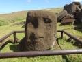 Голова моаи