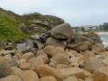 Камни на побережье